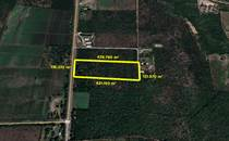 Lots and Land for Sale in Mazatlan, Sinaloa $20,154,596