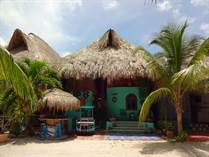 Homes for Sale in Paamul, [Not Specified], Quintana Roo $179,900