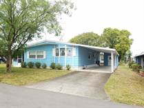 Homes for Sale in Foxwood Village, Lakeland, Florida $25,000