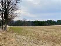 Lots and Land for Sale in Berkeley Springs, West Virginia $121,520
