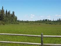 Farms and Acreages for Sale in Alberta, Rural Clearwater County, Alberta $349,000