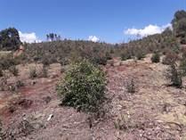 Lots and Land for Sale in Nyandarua, Igwamiti KES10,605,000