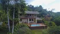 Homes for Sale in Tinamastes, Puntarenas $239,000