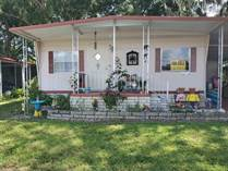 Homes for Sale in LakeShore Villa, Tampa, Florida $35,500