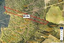 Lots and Land for Sale in Acadia Parish, Basile , Louisiana $40,000
