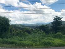 Lots and Land for Sale in Carraizo, Trujillo Alto, Puerto Rico $99,000