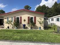 Homes for Sale in Silver Dollar, Odessa (Hillsborough County), Florida $93,500