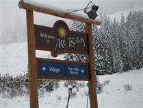 Lots and Land for Sale in Mt. Baldy, Oliver, British Columbia $74,900
