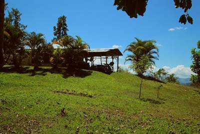 Spectacular views of the jungle in San Isidro