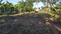 Lots and Land for Sale in Barrio Galateo Bajo, Isabela, Puerto Rico $30,000