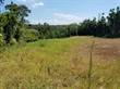 Lots and Land for Sale in Grecia, Alajuela $22,000