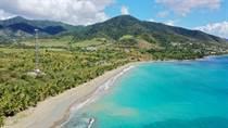 Homes for Sale in Patillas, Puerto Rico $5,000,000