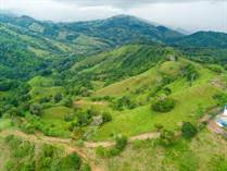 Farms and Acreages for Sale in Platanillo, Puntarenas $795,000