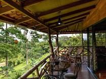 Homes for Sale in La Fortuna , Alajuela $250,000