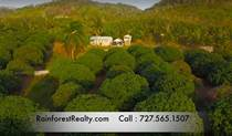 Farms and Acreages for Sale in San Ignacio, Cayo $795,000