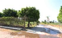 Homes for Sale in San Antonio Tlayacapan, Chapala, Jalisco $42,333,840