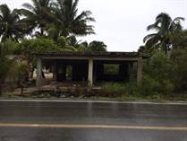 Lots and Land for Sale in Telchac Puerto, Yucatan $53,000