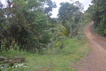 Lots and Land for Sale in Pavones, Puntarenas $56,000