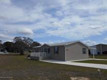 Homes for Sale in Brookridge, Brooksville, Florida $169,721