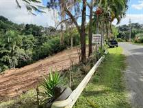 Lots and Land for Sale in Bo. Atalaya, Rincon, Puerto Rico $45,000