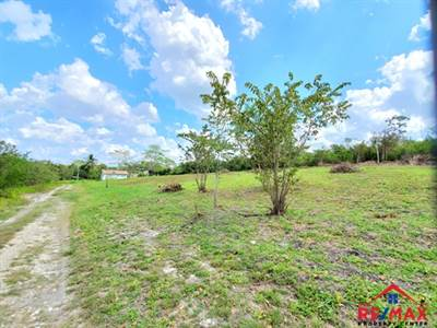 #4044 - Four Adjacent Residential Lots in San Ignacio Town