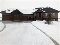 Homes Sold in Linden, Manitoba $519,000
