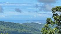 Farms and Acreages for Sale in Tinamastes, Puntarenas $339,000