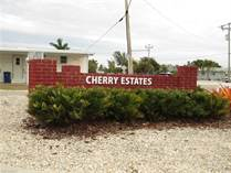 Lots and Land for Sale in Florida, ST. JAMES CITY, Florida $150,000