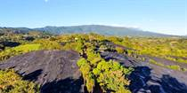 Farms and Acreages for Sale in Grecia, Alajuela $1,980,000