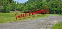 Commercial Real Estate for Sale in Bo Quebrada Larga, AÑASCO, Puerto Rico $950,000