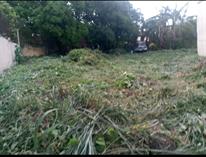 Homes for Sale in Bf Homes Paranaque, Paranaque City, Metro Manila $992,250