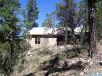 Homes for Sale in New Mexico, Lake Roberts, New Mexico $224,900