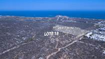 Lots and Land for Sale in El Tezal, Cabo San Lucas, Baja California Sur $2,692,614