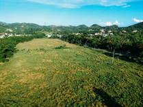 Lots and Land for Sale in Bo. Calvache, Rincon, Puerto Rico $1,500,000
