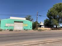 Homes for Sale in Douglas, Arizona $87,000