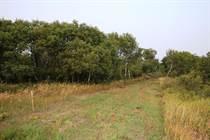 Lots and Land for Sale in RM of Blucher 343, Saskatoon, Saskatchewan $190,000
