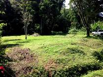 Lots and Land for Sale in Hone Creek, Limón $22,000