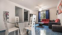 Homes for Rent/Lease in Centro, Playa del Carmen, Quintana Roo $500 monthly