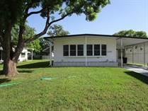 Homes for Sale in Brookridge, Brooksville, Florida $89,500