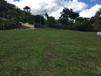 Lots and Land for Sale in Playa Flamingo, Guanacaste $115,000