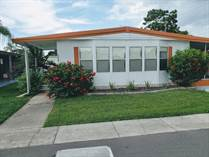 Homes for Sale in Serendipity Mobile Home Park, Clearwater, Florida $35,900