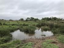 Recreational Land for Sale in Motley County, Matador, Texas $1,954,986