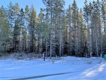 Lots and Land for Sale in Valemount, British Columbia $139,000