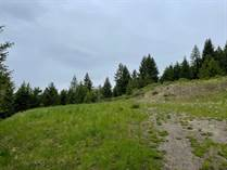 Lots and Land for Sale in Anarchist Mountain, Osoyoos, British Columbia $128,800
