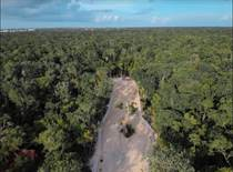 Lots and Land for Sale in Tulum, Quintana Roo $84,401