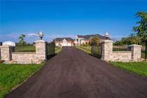 Homes for Sale in Hamilton, Ontario $3,988,888