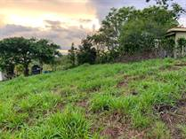 Lots and Land for Sale in Barrio Jesús, Atenas, Alajuela $53,000
