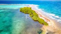 Lots and Land for Sale in Turneff Atoll, Turneffe Atoll, Belize $1,150,000