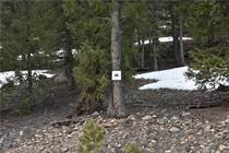 Lots and Land for Sale in Fairplay, Colorado $28,000