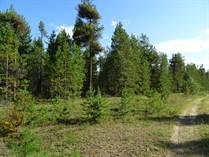 Lots and Land for Sale in Valemount, British Columbia $199,000